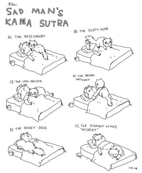 Cat Kamasutra